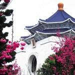 一足先に台北でお花見!