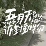 最新C-POPヒットチャート!(5月16日~5月22日)