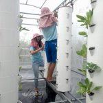 4日間で旅行とは一味違う台湾を体験!農業ボランティア参加で子どもたちを支援